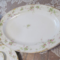 Large Platter Limoges Plates with Roses Theodore Haviland Limoges China Plates with Roses Limoges Wedding Serving Dishes Waldorf Hotel China