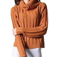 Women's Simple Vertical Stripes Turtleneck Knit Tunic Pullover Sweater