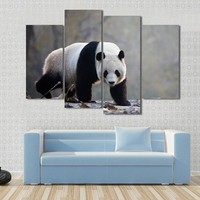 Panda Moving On Rotten Leaves Canvas