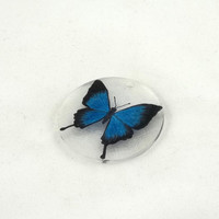 Electric Blue Butterfly Shrink Plastic Pendant by theotherstacey