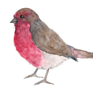 Watercolor painting, bird painting, animal painting, bird print, finch painting, bird art, house finch, bird illustration, 7X5 print