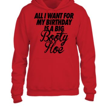 All I Want For My Birthday is a Big Booty Hoe - UNISEX HOODIE