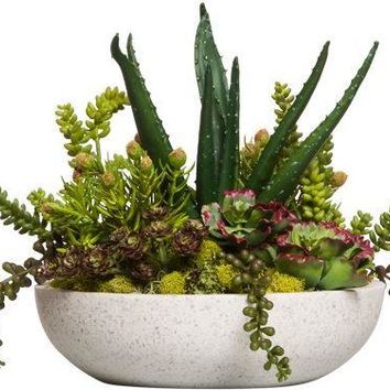 Asst Succulents In White Round Terrazzo Bowl