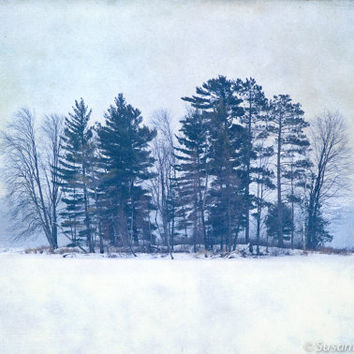 Nature Photography, Snowy Winter Landscape, Island with Trees, Fine Art Print, Blue and White, Solitude, Serene, Christmas in July