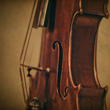 Violin's Profile Fine Art Photography Musical Instrument Music Photo Print Classical Music Room Decor Music Lover Christmas Gift Idea