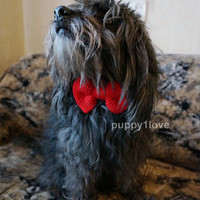Dog bow tie Dog collar Pet accessories Pet Collar Knitted Bow Dog Collar bow Gift for dog Pet bow Bow Tie Pet clothing Doggy bow Dog clothes