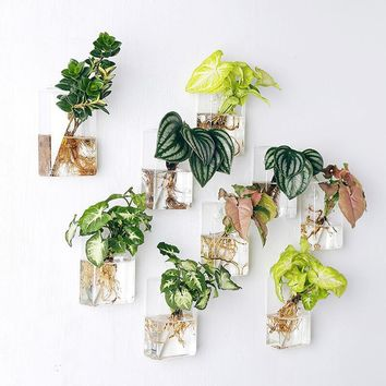 Wall Mounted Hanging Clear Glass Flower Air Planter Vase Hydroponic Pot Terrarium Container Home Office Decorative