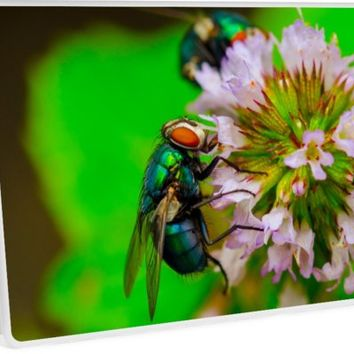 'Fliege' Laptop Skin by zappwaits