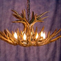 Mule Deer Chandelier with 12 Antlers