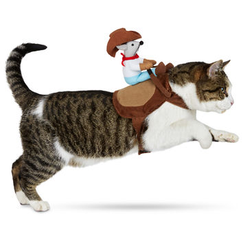 Petco Halloween Kitty Up Cowboy Cat Costume