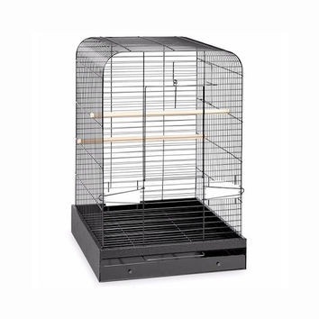 Prevue Hendryx Pet Products Madison Bird Cage With Large Landing - Style Front Door And Easy Access, Color - Black