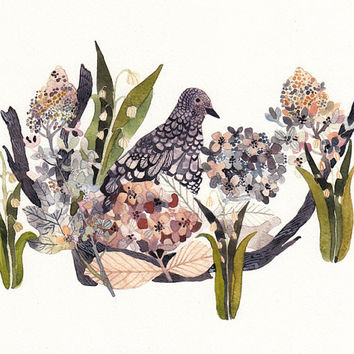 Mourning Dove, Hydrangeas, and Snow Drops - Archival Print