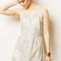 Wheeling Perforated Dress by Dolce Vita Ivory