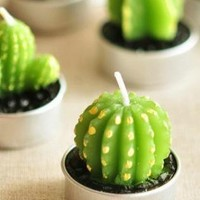 Cute Cactus Shape Mini Candle Gift Box Set of Six