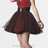 Strapless Zebra Print Homecoming Dresses by Alyce Designs