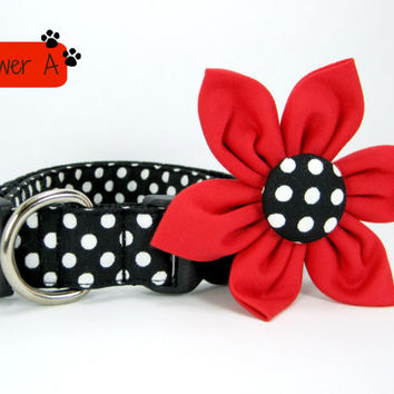 Dog Collar with Flower set- Black and white Polka Dot (Mini,X-Small,Small,Medium ,Large or X-Large Size)- Adjustable