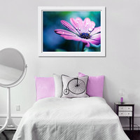 floral photography fine art botanical photography 8x10 8x12 pink purple daisy flower nature photography teal wall art bedroom dorm decor