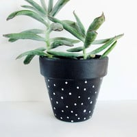 Black Polka Hand Painted Plant Pot - 11cm by This Way To The Circus