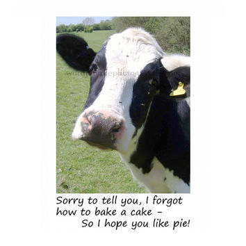 Best animated birthday cards funny products on wanelo catty cards greeting cards bessie the black and white milk cow cant cook bookmarktalkfo Images