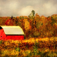 Red Barn in Autumn - Landscape Photography - Fall Photo - 11x17