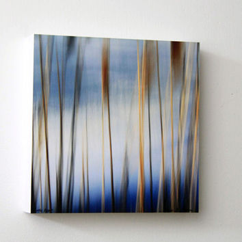 Brown and Blue, Abstract Photography, Winter Reeds, Nature Wall Decor, 8X8 Wood Panel, Square Wall Art, Ready to Hang, Wall Hanging