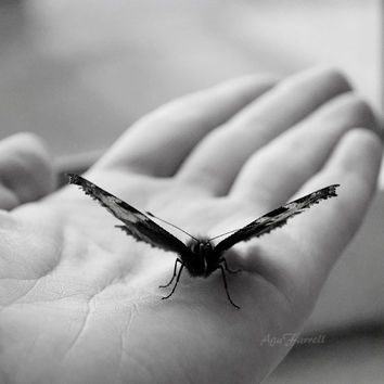 Black and White Photography, Monochromatic Art, Butterfly Print, Butterfly on Hand, Black and White Art, 8x8