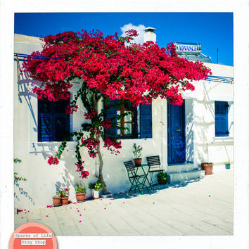 Square digital download, Greece printable, travel, white wash building, flowers, traditional Greek home architecture, wall art, home decor