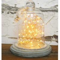 Glass Cloche Bell Jar - Choose Your Color - Colorful Cast and Crew