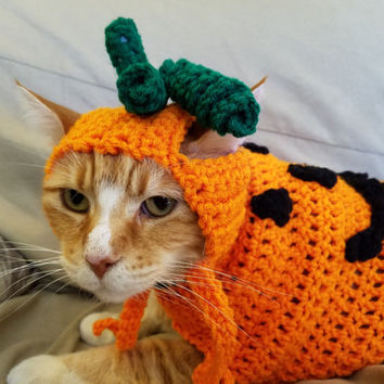 Pumpkin Cat Costume/Sweater (with or without pumpkin hat)- Halloween Costumes for Cats- Pumpkin Cat- Pumpkin Cat Hat- Jack o Lantern Cat