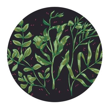 Plants by Erin Lux