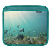 School of Fish Swimming Under Water Sleeve For iPads