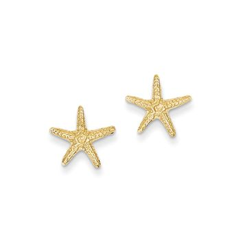 11mm Textured Starfish Post Earrings in 14k Yellow Gold