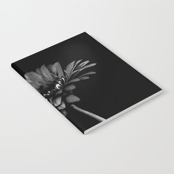 Daisy gerbera. Black and white Notebook by vanessagf