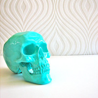 Skull Head in Aqua: Mr. Smiley
