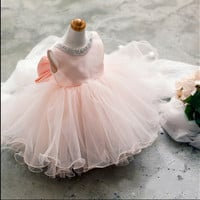 Pink Luxury Princess Dress Children Prom Dress [4919698180]