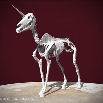 Unicorn Skeleton 3D Print