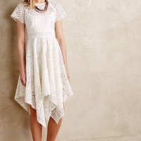 Prima Lace Dress by Maeve