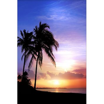 PRINTED BEACH SUNSET PHOTO BACKDROP WITH PALM TREE 5x6 - LCPC1587 - LAST CALL