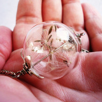 Stunning Dandelion Seed Glass Globe Necklace In Silver, Lucky You