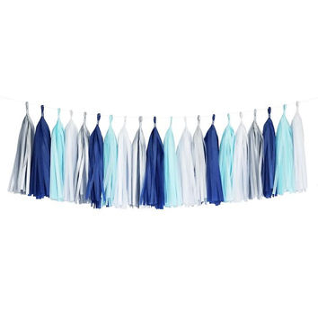 Winter Blues Aqua White Silver Turquoise Tassel Garland Banner Party Decoration