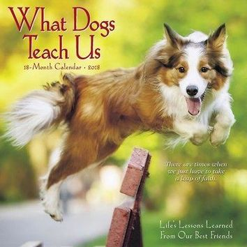 What Dogs Teach Us Mini Wall Calendar, More Dogs by Willow Creek Press