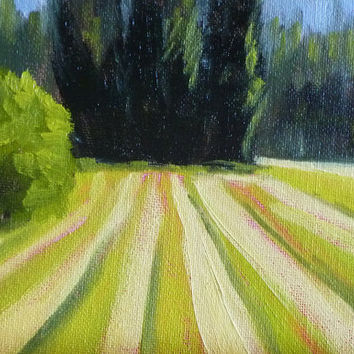 Landscape Painting, Small, Original,  Oil, 5x7, Canvas, Green, Fields, Trees, Country, Windbreak, Farm Land