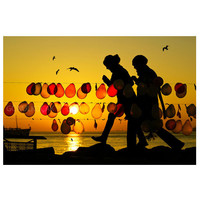 silhouette photography, Balloon,  Sunset, photography, color, Landscape, istanbul, istanbul photography, seagull , 10''x 15 ''