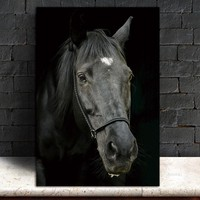 Picture horse  wall painting art canvas Picture decor poster canvas painting Wall art animals art print Wall Picture no frame