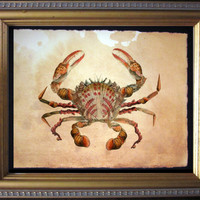 Crab Seashells Collage Art Print - Seashells Art - Vintage Style Nautical Art Print Crab on Tea Stained Paper