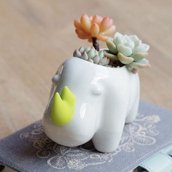 Rhinoceros Elephant Buffalo Kawaii Little Animals Ceramic Flowerpot, Planter Cute White Cactus Succulent Plants Flower Pot Home Garden Decor