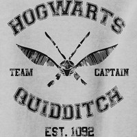 Hogwarts Quidditch Parody -  Sweater Grey or Black