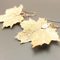 24kt Gold Plated Maple Leaf Earrings