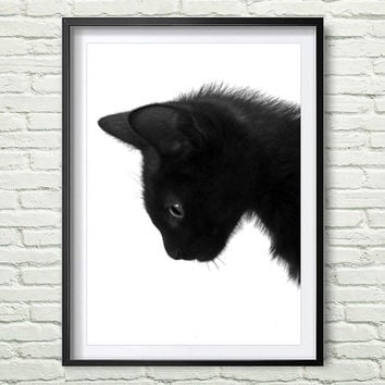 Cat Print, Black Cat, Printable Art, Cat Art, Art Print, Wall Decor, Wall Art, Instant Download *42*