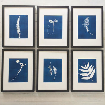 Blue Botanical Prints, Set of 6 Framed, Hand pressed botanical, cyanotype style, Gift for him, Fathers day, Wall art set, Ferns